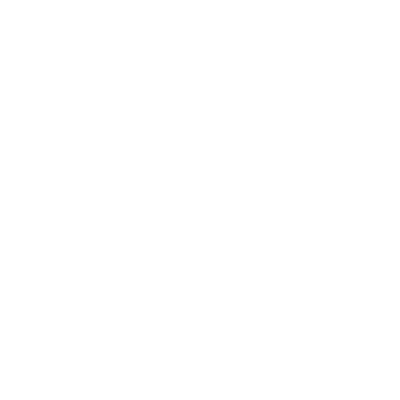 Icon Report Export