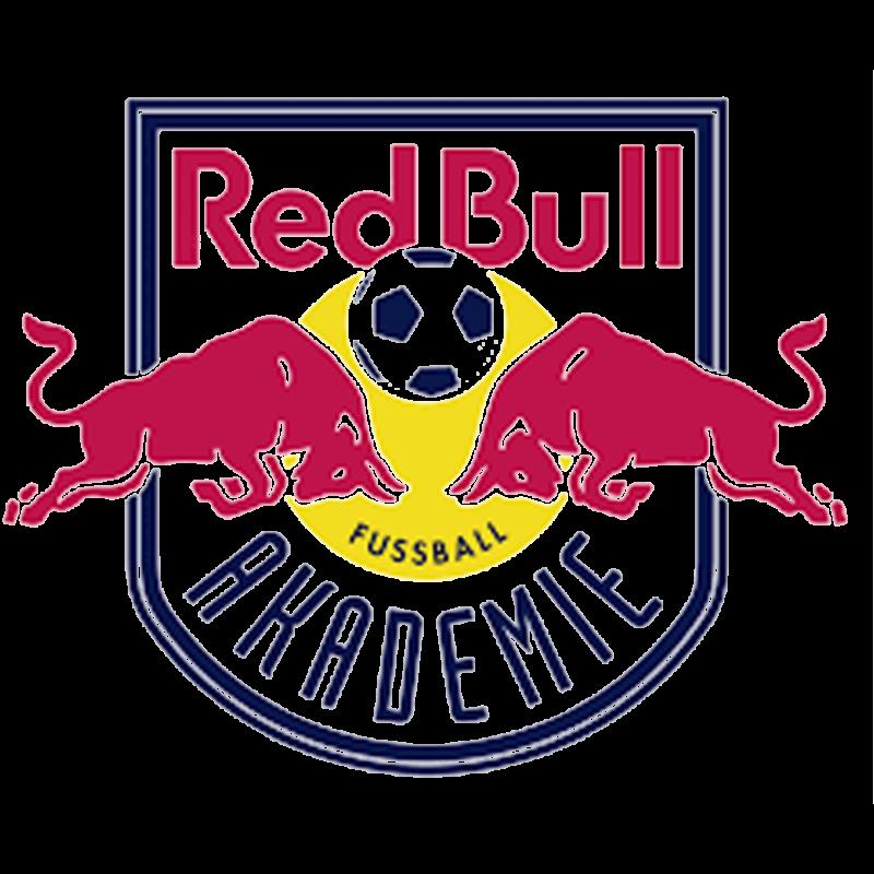 Red Akademie Lieferung Logo